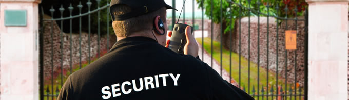 homeSecuritypage